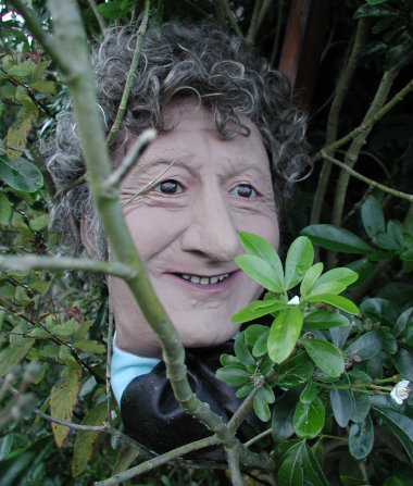 The Doctor's Head goes for a Roll - Bush Peeping