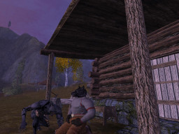 Vanguard: Saga of Heroes Screen Shot 1